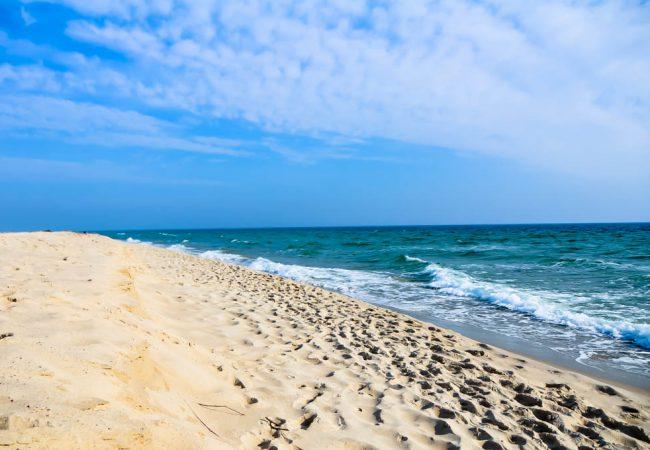 Pflegeprodukte aus Meer: Eigenschaften von Algen, Kaviar, Meersalz und anderen Meeresmineralien